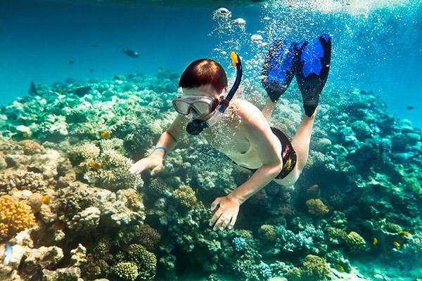 Lặn biển ngắm những rặng san hô