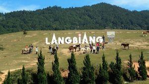 Vé máy bay giá rẻ đi Đà Lạt khám phá đỉnh Langbiang