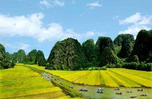 Vietnam Airlines khuyến mãi vé máy bay giá rẻ 299k