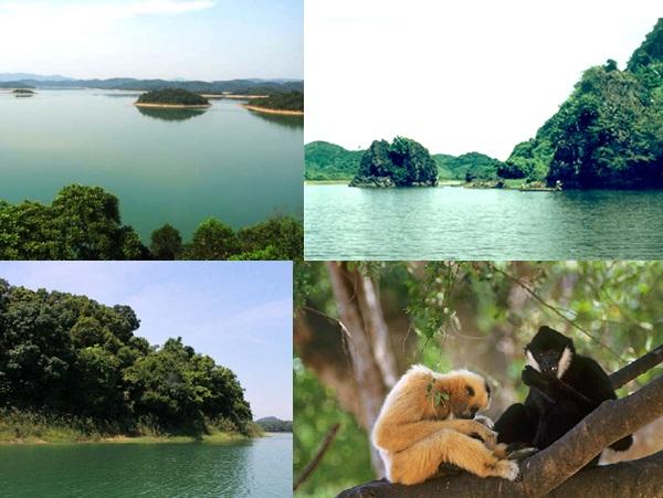 Vườn quốc gia Bến En, những giá trị đích thực của thiên nhiên Việt Nam