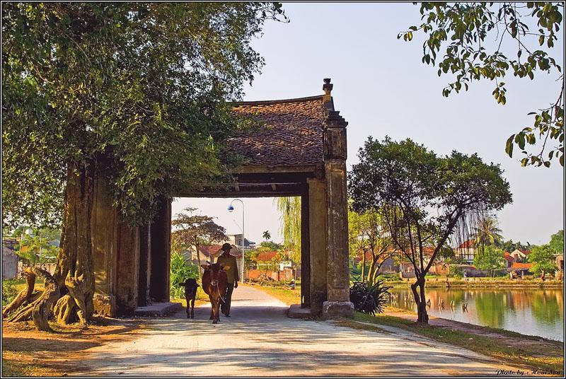 Con đường làng mộc mạc ở Làng cổ Đường Lâm