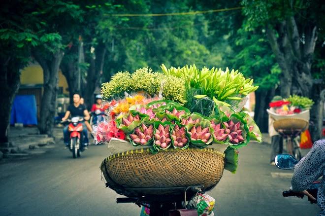 Vé máy bay Vinh Hà Nội