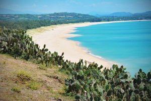 Top 14+ địa điểm du lịch Phú Yên nhất định phải đến một lần trong đời